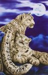 Dd12.004 Diamond Dotz Snow Leopards