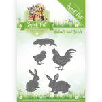 Add10119 Ad mal Sweet pet Rodens - birds