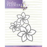 Pm10123 PM Timeless flowers Clematis