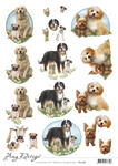 Cd11458 3d Knipvel - Amy Design - Dogs
