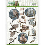 Cd11563 Ad Amazing Owls - Night Owls
